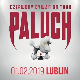 Paluch - Lublin